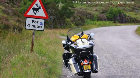 Wild deer warning sign on the NC500 route, Scotland; copyright Christopher P Baker