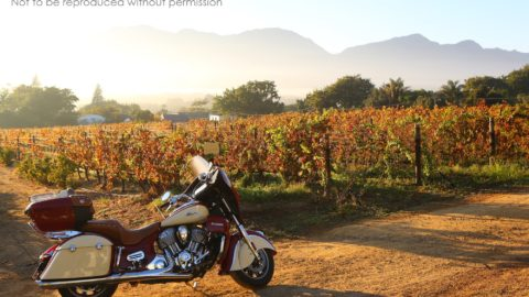 SX2A3849 2000px 2015 Indian Roadmaster at Grand Roche, Paarl, South Africa; copyright Christopher P Baker