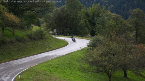 SX2A4050 Tour member on a BMW R1200GT in the Black Forest, Germa, on Edelweiss Bike Travel 'Best of Europe' tour; copyright Christopher P Baker